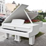 «Рояль в кустах»