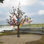 Дерево счастья в Наводницком парке