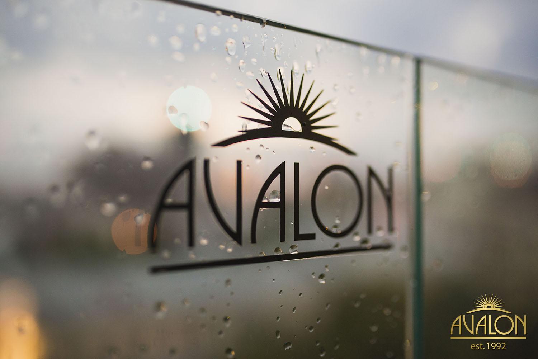 Вечеринка в «Avalon»